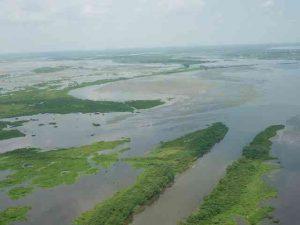 shoreline restoration